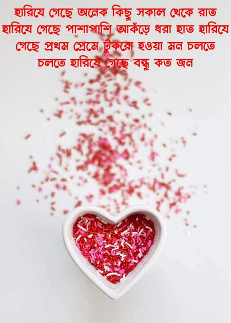 bengali quotes for beautiful girl