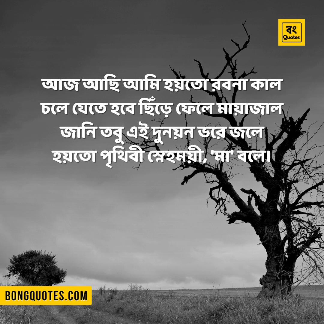 Facebook, Whatsapp Status about Death in Bengali