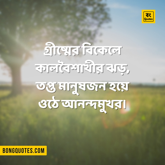 ~ Bangla Quotes on Summer