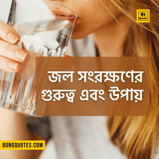 water preservation essay in bangla